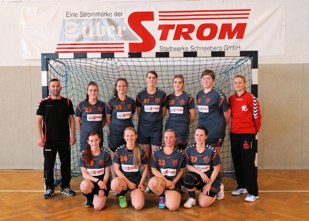 Schneeberg Handball